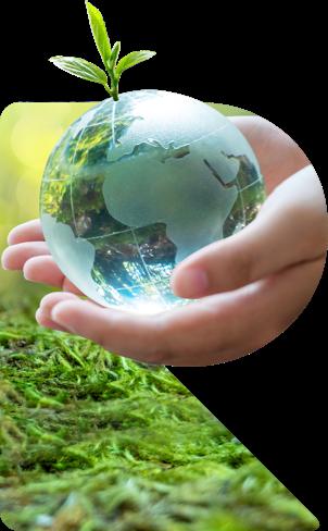 Sustainability R